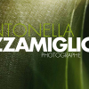 pizzamiglio_ev