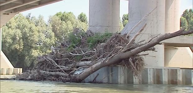 ponte-legna-ev