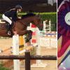 amadini-cavallo_ev
