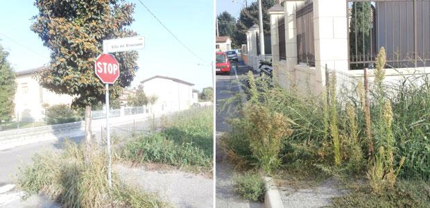 via-veneziano-ev