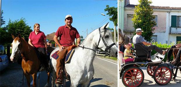 cavalli-quattrocase_ev