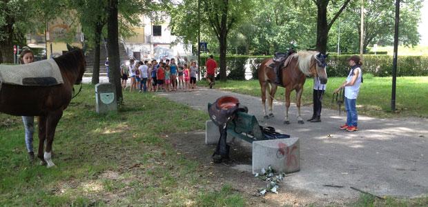 cavalli-studenti-lido_ev