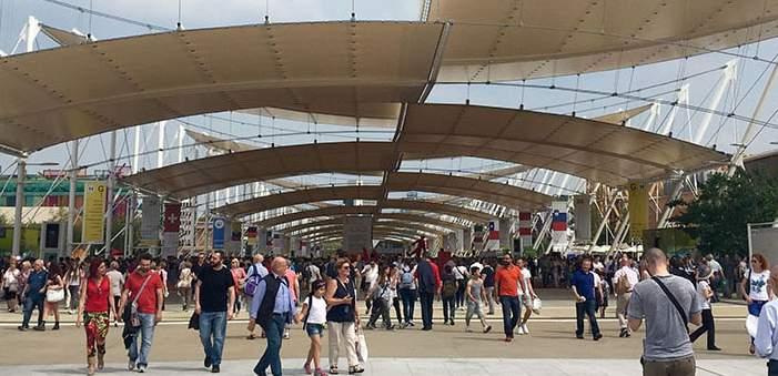 expo-ev