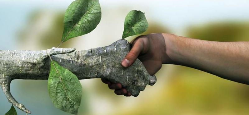 ecosostenibilita-ev