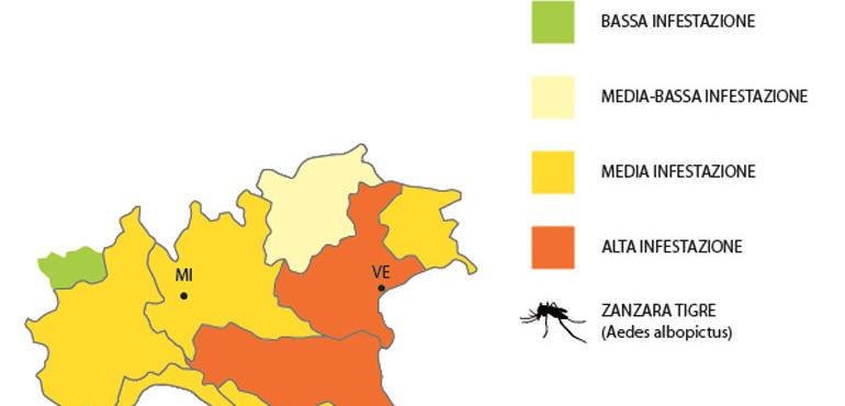 zanzara-tigre_ev