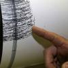 terremoto_ev