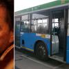 torchio-bus_ev