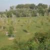 parco_ev