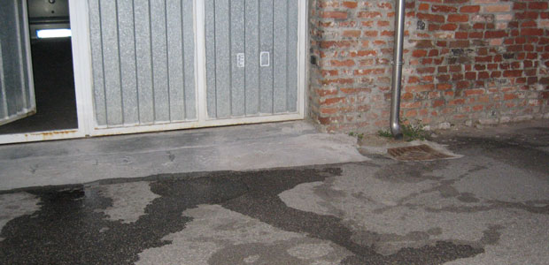 Pip del cane la vera vittima la mia famiglia - Parcheggiano davanti casa cosa si puo fare ...