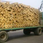 camion-legna-ev