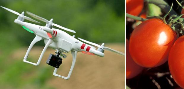 drone-pomdoro-ev