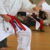 karate_ev