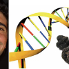 morselli-genoma-ev