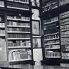 biblioteca-parazzi_ev