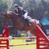 amadini-equitazione_ev