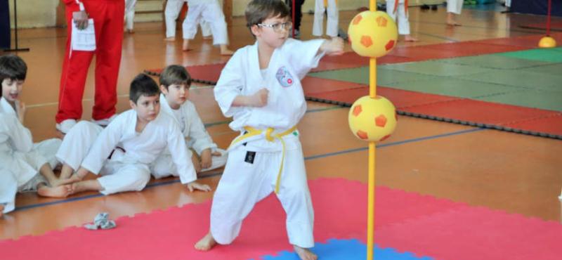 karate-ev