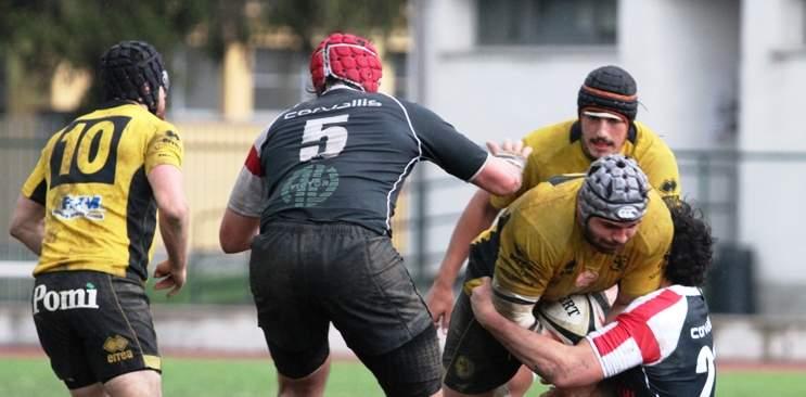 viadana-rugby-ev