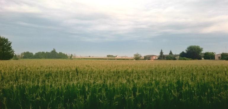 campi-cielo-evid-770x370