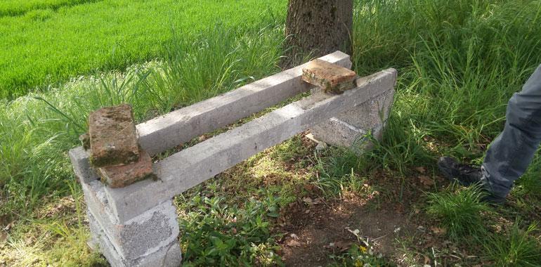 Nella foto il luogo in cui le arnie sono state rubate